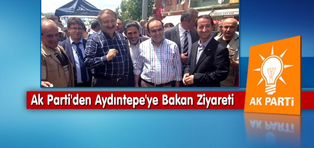 Ak Parti'den Aydıntepe'ye Bakan Ziyareti