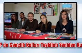 CHP'de Gençlik Kolları Teşkilatı Yeniden Kuruldu