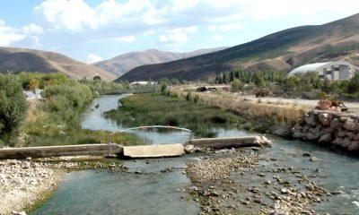 Kuraklık Çoruh Nehrini Bataklığa Dönüştürdü-Foto Haber