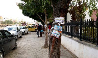 Bayburt'ta Ağaçlar ve Direkler İsyan Ediyor-Foto Haber