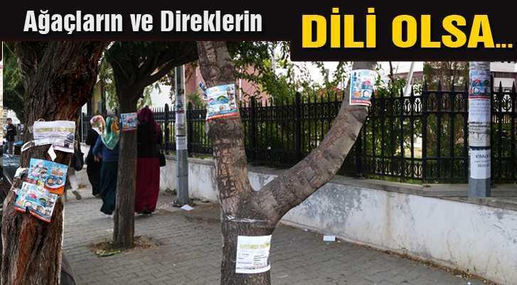 Ağaçlar ve Direkler İsyan Ediyor…