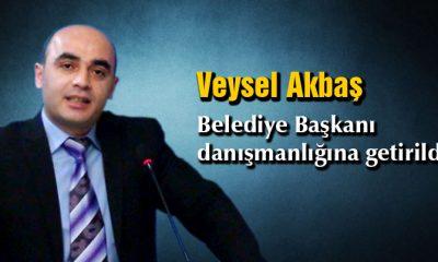 Veysel Akbaş, Belediye Başkan Danışmanı Oldu