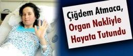 Çiğdem, Organ Nakliyle Hayata Tutundu