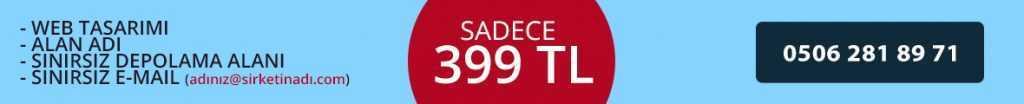 399 TL Profesyonel Web Sitesi