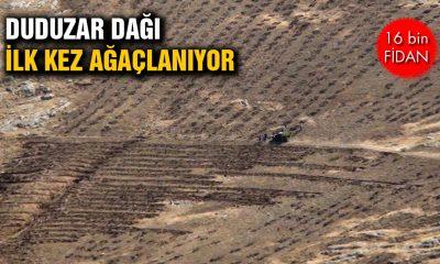 Duduzar'a 16 Bin Fidanı Dikiliyor