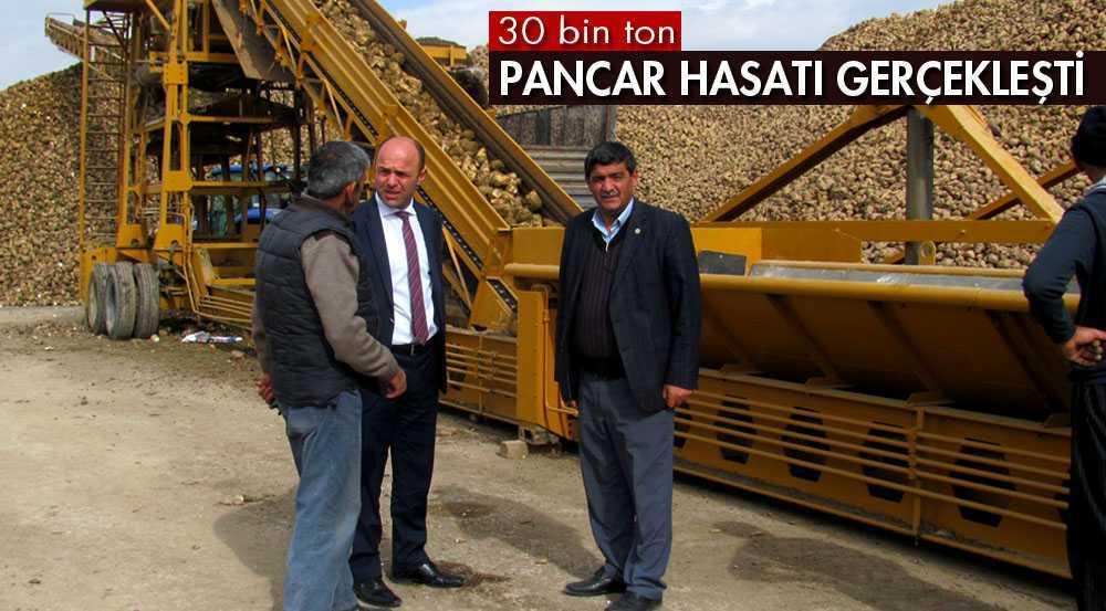 Bayburt'ta 30 Bin Ton Pancar Hasat Edildi