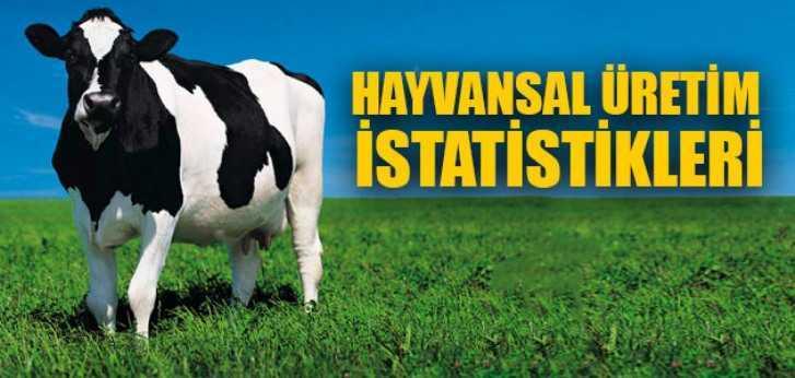 Bayburt'ta Azalan Hayvan Sayısı İstatistikleri Tek Tek Açıklandı