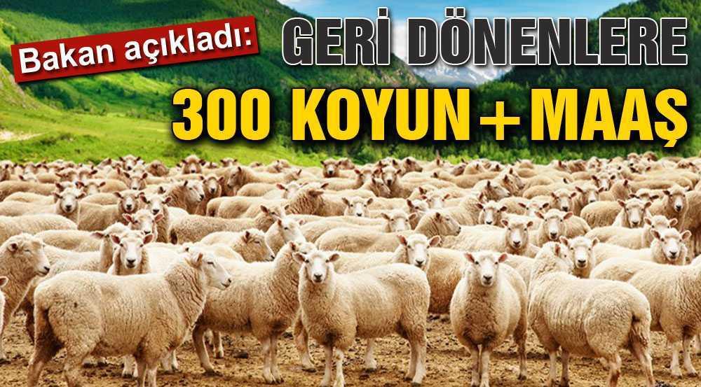 Bakan Fakıbaba'dan Köyüne Dön Projesi