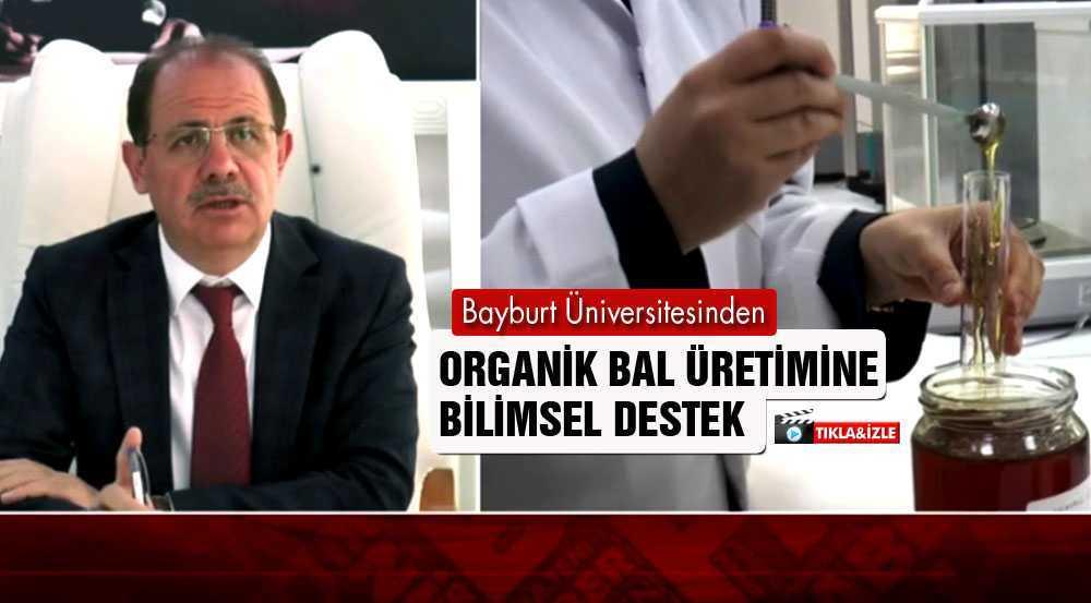 Bayburt Üniversitesinden Organik Bal Üretimine Bilimsel Destek
