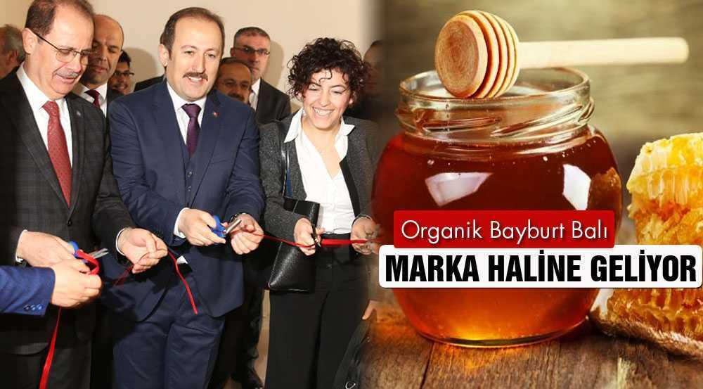 Bayburt'ta, Organik Arıcılık Projesi'nin Açılışı Törenle Yapıldı