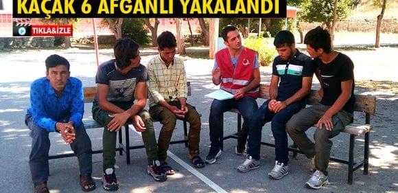 Bayburt'ta 6 Kaçak Afganlı Göçmen Yakalandı