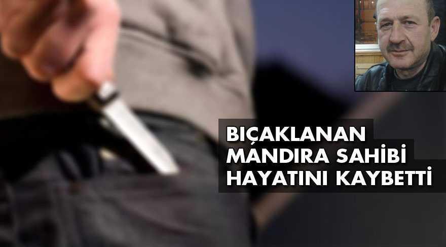 Bayburt'un Kitre Köyünde Mandıra Sahibi Bıçaklanarak Öldürüldü