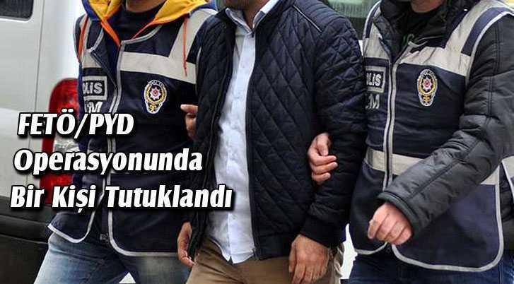 FETÖ/PYD Operasyonunda Bir Kişi Tutuklandı