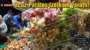 Bayburt'ta Ucuz Patates İzdiham Yarattı!