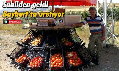 Trabzon'dan Geldi, Bayburt'ta Topraktan Ekmekğini Kazanıyor