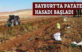 Bayburt'ta Patates Hasadı Başladı